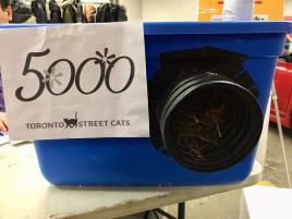 5000th shelter