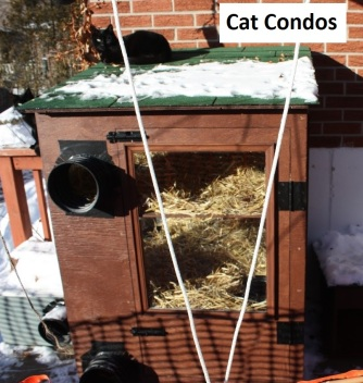 Cat condo3 - Copy