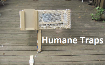 TSC - Humane Traps