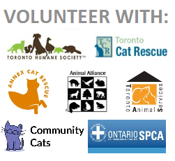 Logo - Coalition - without TSC - volunteer with