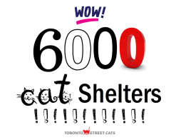6000 Cat Shelters sign